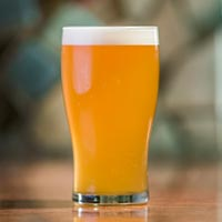 Zesty's Best Citrus IPA